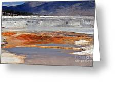 Yellowstone National Park Geothermal Reflections Greeting Card