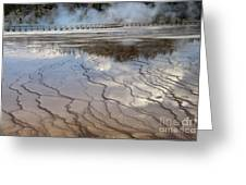 Yellowstone Reflection Greeting Card