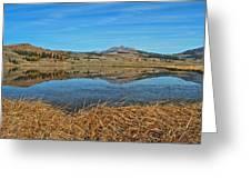 Yellowstone Reflections 9437 Greeting Card