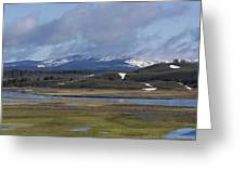 Yellowstone Vista 10 Greeting Card by Charles Warren