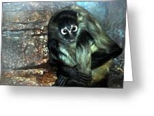 Yoga Monkey Greeting Card