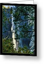 Yosemite Falls Through Trees Greeting Card