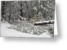 Yosemite Winter Greeting Card by Heidi Smith
