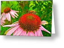 You Bee Long To Me Greeting Card