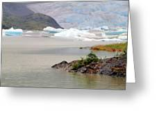 You Won't Believe Mendenhall Glacier Greeting Card