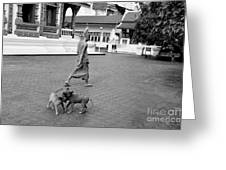 Young Dogs Greeting Card by Dean Harte