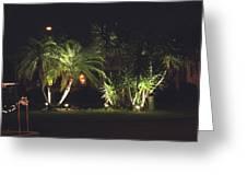 Yucca Spot Lighting Teakwood Island Greeting Card