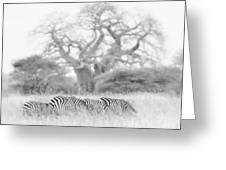 Zebra And Tree Greeting Card