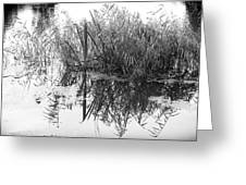 Zen Pond Greeting Card