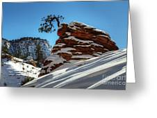 Zion National Park In Winter Greeting Card
