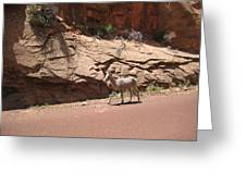 Zion Mountain Goat Greeting Card