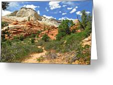 Zion National Park - A Picturesque Wonderland Greeting Card by Christine Till