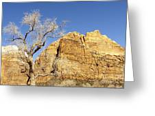 Zion Winter Sky Greeting Card