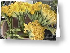 Zucchini Blossoms Greeting Card