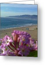 Zuma Beach Wildflower Greeting Card