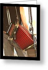 Zydeco Red Accordian Greeting Card