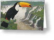 Tucan Greeting Card