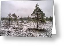 April Snow 1 Greeting Card