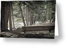 Bench By The Stream Greeting Card