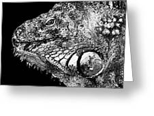 Black And White Iguana Art - One Cool Dude 2 - Sharon Cummings Greeting Card