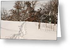 Christmas Snow Trail Greeting Card