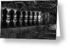Columns And Pine Greeting Card