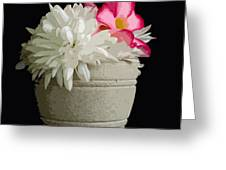 Desert Rose   Chrysanthemum And Adenium Obesum Greeting Card