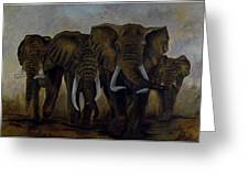 Elephant Herd Hurrying For A Drink Greeting Card