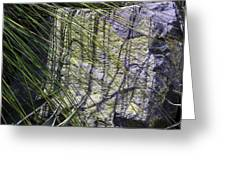 Grass And Stone  Greeting Card