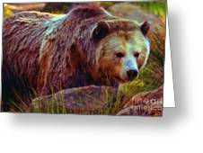 Grizzly Bear In Rocks Greeting Card