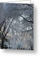 Ice Storm On The 6th II Greeting Card