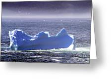 Iceberg Floating By Greeting Card