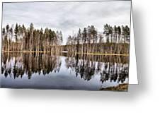 Liesilampi Panorama Greeting Card