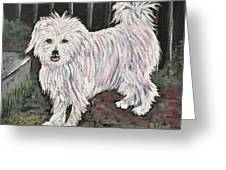 Maltese Terrier Mix In Living Color Greeting Card