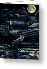 Moonlit Wolf Pack Greeting Card