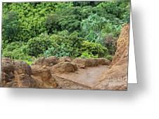 Muddy Kalalaua Trail - Kauai Greeting Card