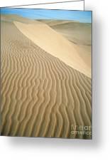 Pismo Dunes Greeting Card