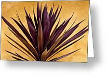 Purple Giant Dracaena Santa Fe Greeting Card