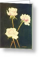 Roses In Full Bloom Greeting Card