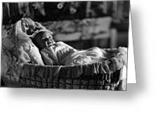 Smiling Baby In Bassinet 1910s Black White Boy Greeting Card