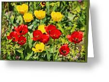 Spring Landscape With Tulips Greeting Card