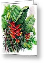 Tiger Claw .. Heliconia Greeting Card