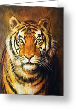 Tiger Head, Color Oil Painting On Canvas. Greeting Card
