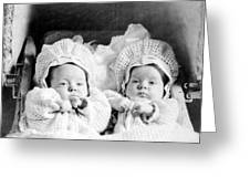 Twins In Baby Buggy 1910s Black White Archive Greeting Card