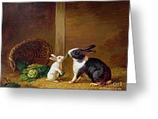 Two Rabbits Greeting Card