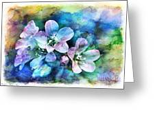 Wildflowers 5  -  Polemonium Reptans - Digital Paint 4 Greeting Card