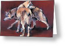 Wolf Composition Greeting Card