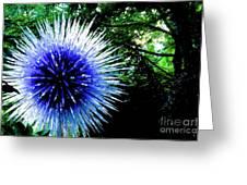 01142017073 Greeting Card