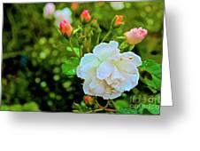 01142017080 Greeting Card