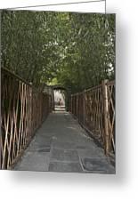 0171- Bamboo Walkway Greeting Card